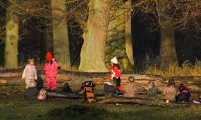 children playing in the wild